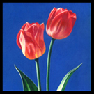 Two Tulips Acrylic Painting