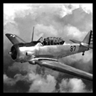 Mr Mitchell and WW2 Airplane - Old Photo Restoration